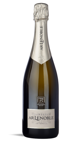 Arlenoble Intense Champagne